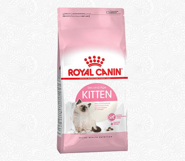 На сегодняшний день существует множество линеек кормов для котят регдолла