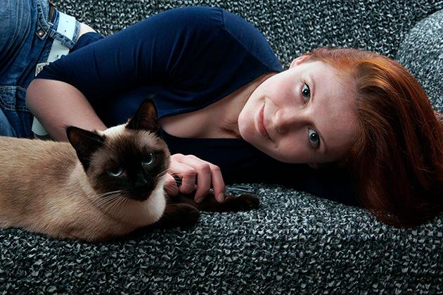 Сиамские кошки прекрасно уживаются с людьми под одной крыши